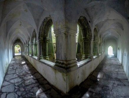 Muckross Abbey, Killarney